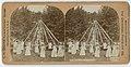 The Merry Maypole Dance (9068813205).jpg