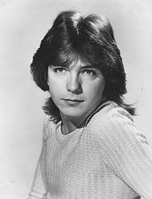 Shag (haircut) - American actor David Cassidy in 1972.