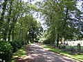 The drive of Liversedge Cemetery, Clough Lane, Liversedge - geograph.org.uk - 542465.jpg