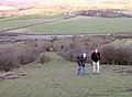 The modern ascent to Beacon Hill iron-age hillfort, Burghclere - geograph.org.uk - 25260.jpg