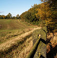 The north edge of Howell Wood - geograph.org.uk - 597400.jpg