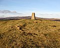 The trig point on Old Fawdon Hill - geograph.org.uk - 638977.jpg