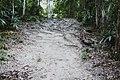 Tikal (10515202284).jpg