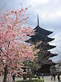 To-ji National Treasure World heritage Kyoto 国宝・世界遺産 東寺 京都078.JPG