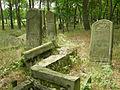 Tombstones in the jewish cemetery in Otwock.jpg