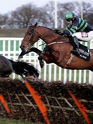 Hurdling (horse race) - Tony Dobbin on Al Eile in the 2007 Fighting Fifth Hurdle.
