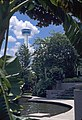 Tower of the Americas from the River Walk -- San Antonio.jpg