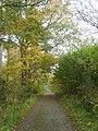 Track, Hills Wood - geograph.org.uk - 1548833.jpg