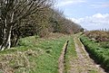 Track along the Purbeck Hills over Grange Hill - geograph.org.uk - 764649.jpg