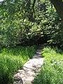 Trail (162711136).jpg