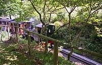 Train leaving Dolgoch Falls station - geograph.org.uk - 764503.jpg