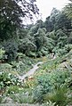 Trebah Gardens - geograph.org.uk - 290316.jpg