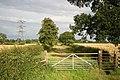 Trent Lane - geograph.org.uk - 497422.jpg