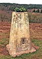 Triangulation pillar on Stagborough Hill - geograph.org.uk - 1727659.jpg