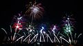 Tsuchiura Fireworks Competition 2011 c.jpg