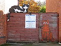 Two flat cats - geograph.org.uk - 1050214.jpg