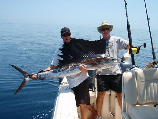 Two men holding a freshly caught sailfish