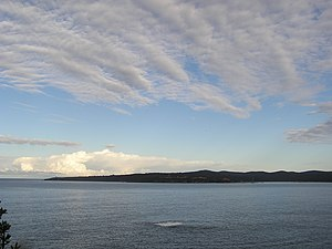 Twofold Bay - A view of the bay from Eden.