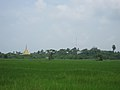 Typical rice field, pagoda, trees and sky view in Myanmar.jpg