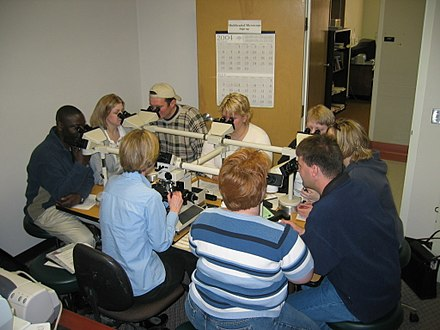 An anatomical pathology instructor uses a microscope with multiple eyepieces to instruct students in diagnostic microscopy. UNDmicroscope.jpg