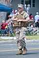 US Marine Expeditionary Force (14032749627).jpg