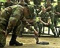 US Navy 020517-N-4309A-006 Thai Military - Jungle Survival Training.jpg