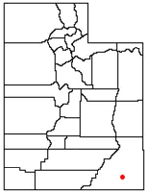 Cedar Mesa - Location of Cedar Mesa in Utah