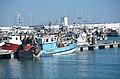 Un chalutier de pêche côtière (29).jpg