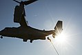 VMM-263 Conducts Fast-Rope Training With MARSOC 150623-M-SW506-735.jpg