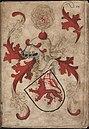 Valkenborch - Valkenburg - Wapenboek Nassau-Vianden - KB 1900 A 016, folium 17r.jpg