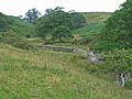Valley of the Murton Beck - geograph.org.uk - 220687.jpg