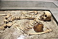 Vampire skeleton of Sozopol in Sofia PD 2012 05.JPG