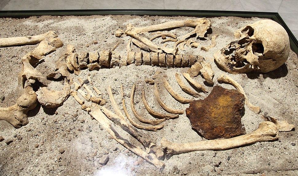 Vampire skeleton of Sozopol in Sofia PD 2012 06