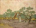 Van Gogh - Olivenpflücker1.jpg