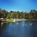 Vasona Lake.jpg