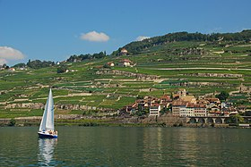 Cully-Lavaux