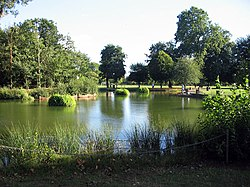 The 'Bathing Pond' in Victoria Park. It has not been used for bathing since 1936, when the park lido opened, but it is very popular with angels. (August 2005)