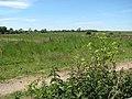 View across Burgh Marshes - geograph.org.uk - 1337008.jpg