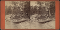 View of Rev. J.M. Pullman's, Summer Land, by A. C. McIntyre.png