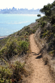 View of San Francisco from Coastal Trail in Marin Headlands.png