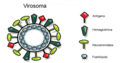 Virosome Components esp.png