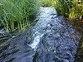 Vitrupes ieleja netālu no Brīdagas (Ķirbižu Upītes) 6.jpg