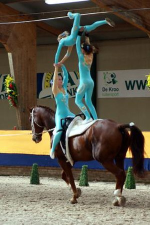 Equestrian vaulting - Freestyle team vaulting
