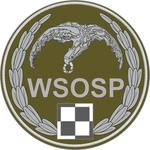 WSOSP oznk rozp (2016) mundur p.png