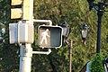 Walk sign, Great Neck, New York.jpg