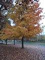 Warren County, New Jersey (8457671719).jpg