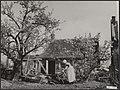 Watersnood 1953. Terugkeer van de bevolking na de evacuatie. Nu de dijk bij Rill, Bestanddeelnr 059-1101.jpg