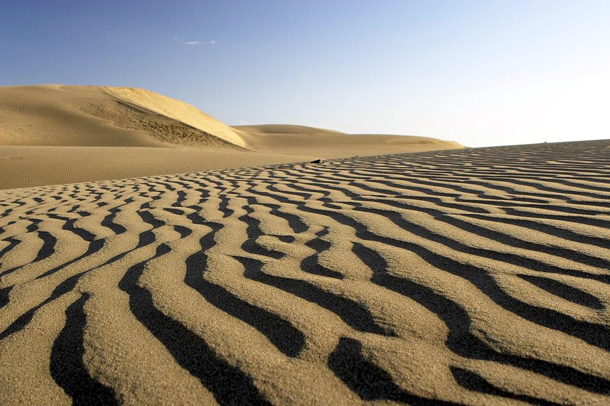 Sand wave - Wikipedia
