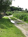 West on the Peddars Way and Norfolk Coast Path - geograph.org.uk - 838440.jpg