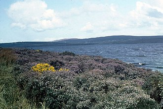 Carrowmore Lake - Image: Western shore of Lough Carrowmore, County Mayo geograph.org.uk 66091